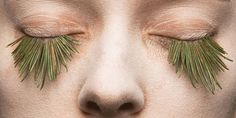 mary graham crafts natural fake eyelashes with foliage, egg and snow