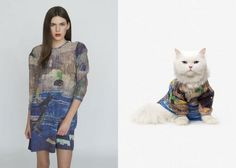 Catclub Collection - cat's fashion from United Bamboo (New York)