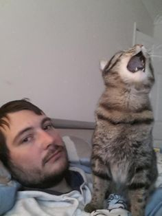 You will lose a lot of sleep. | 25 Things That Are Guaranteed To Happen When You Own A Cat