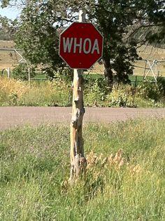 Town with a sense of humor: Alton, Utah