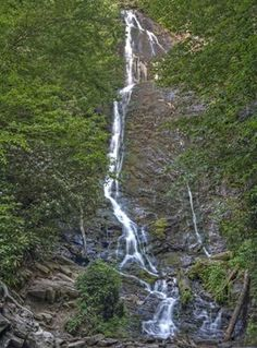 Mingo Falls in the Great Smoky Mountains