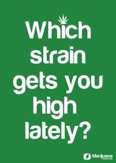 Which strain gets you high!?