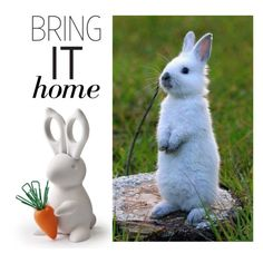 """""""Bring It Home: Bunny Scissors And Clips Desk Tidy"""" by polyvore-editorial ❤ liked on Polyvore featuring interior, interiors, interior design, home, home decor, interior decorating and bringithome"""