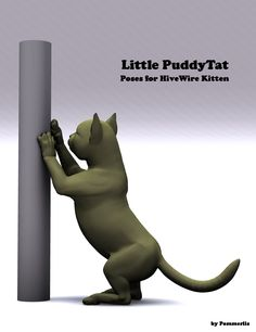 Little PuddyTat Poses for the HiveWire Kitten