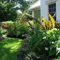 tropical landscape by Garden spaces