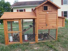 chicken coop pics   http://www.backyardchickens.com/forum/uploads/64380_p8140241.jpg