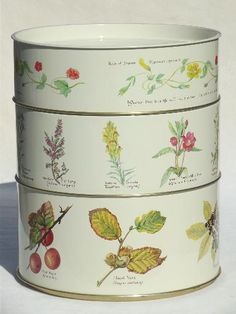 vintage tins w/ Country Diary of an Edwardian Lady Edith Holden botanical prints