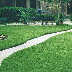 Fall Lawns Alive!® All-Natural Fertilizer