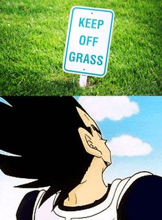 lol Dragon Ball