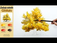 Ginkgo - watercolor on ARCHES (Rough) Draw with a wet-on-wet technique. The main colors are permanent yellow deep, brilliant ora. Watercolor Video, Watercolor Painting Techniques, Watercolor Journal, Watercolor Trees, Watercolour Tutorials, Watercolor Landscape, Watercolour Painting, Watercolors, Ginkgo