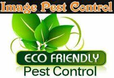 Eco-friendly cockroach treatment