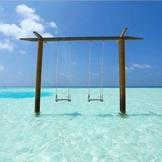 You swing at the park? Try swinging in the clear water of Bora Bora! Places Around The World, Travel Around The World, Around The Worlds, Places To Travel, Places To See, Travel Destinations, Holiday Destinations, Dream Vacations, Vacation Spots