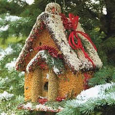 Holiday House Edible Birdhouse