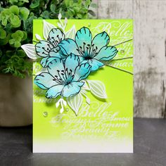 Savvy Creations with Cassandra / Créations avisées avec Cassandra Magenta, Penny Black, White Heat, Green Lawn, Distress Ink, Dried Flowers, Card Stock, Creations, Card Making