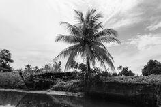 Joshua Duttweiler | Design | Photography | Buffalo NY - SAN JOSE, COSTA RICA | 2013