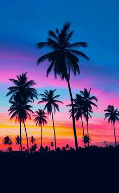 Art 367817494564458978 - Summer Sunset photography sunset beach beautiful ocean tropical travel palm trees vacation Source by spikemcfry Cute Wallpapers, Wallpaper Backgrounds, Neon Backgrounds, Tree Wallpaper, Wallpaper Desktop, Neon Wallpaper, Beach Wallpaper, Best Wallpaper For Android, Nature Wallpaper