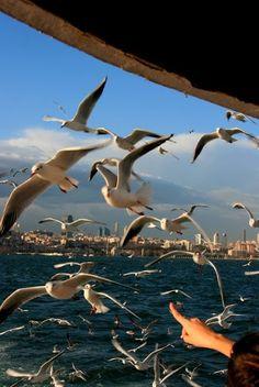 Istanbul (Part I / 10+ Pics)