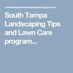 South Tampa Landscaping Tips and Lawn Care program...