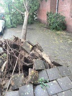 Zuidpolderstraat Haarlem #zomerstorm