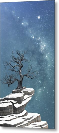 milky way night sky bright lonely star starlight silhouette silent serene magical imaginary landscape lonely bare leafless winter tree snow rocks cliff mountain night sky silhouette Tree Wall Art, Tree Art, Winter Landscape, Landscape Art, Snow And Rock, Thing 1, White Wall Art, Winter Trees, Night Skies