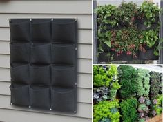 This hanging pocket planter that lets you coat any wall in plants. | Can You Get Through This Post Without Spending $50?