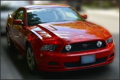 mustang photo Red - http://newsfordmustang.com/mustang-photo-red-1231