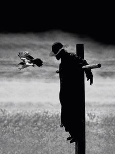 Jeepers Creepers scarecrow...still Wicked!!
