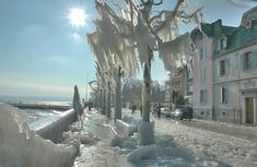 The aftermath of a severe ice storm in Versoix, Switzerland in 2005.
