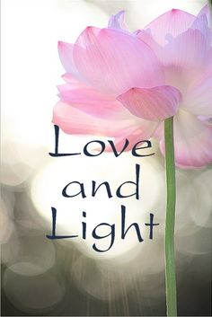 ¸¸.•*¨*•*´¨) ¸.•´¸.•*´¨) ¸.•*¨) (¸.•´ (¸.•` ¤ Love and Light!