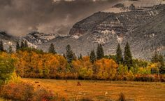 Fall and winter already mingling in Driggs, Idaho. Photo courtesy of WunderPhotographer funhawg wunderground.com