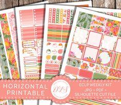 HORIZONTAL Planner Stickers, Erin Condren Horizontal, Weekly Stickers Kit, Printable Planner Stickers, Floral Planner, Poppy Stickers, HS110 by DesignLovelyStudio