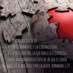 Romanos 2:29 ¡Circuncida mi corazón! #FrutoDelEspíritu #NewHeart #HeartOfFlesh #CircumcisionOfTheHeart #BySpirit #NotByWrittenCode #Amor #AfectoEntrañable New Heart, Believe, Spirituality, Faith, Words, Hearts, Dios, Spiritual, Loyalty