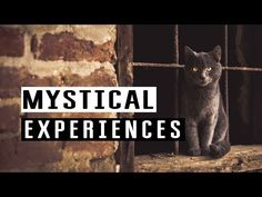 Mystical experiences Best of Abraham Hicks - YouTube