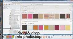 Getting organized with Picasa.Using Picasa with PSE