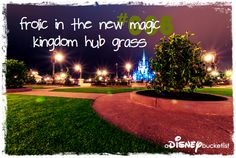 the new hub 'grass' is BAE.