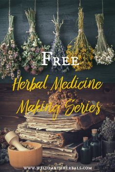 Do you want to learn how to create your own herbal medicines? In this series of totally free online classes, you will receive a basic understanding Holistic Remedies, Natural Health Remedies, Herbal Remedies, Healing Herbs, Medicinal Plants, Natural Healing, Natural Medicine, Herbal Medicine, Belleza Natural
