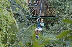 The rainforest zip line adventures offered through Coconut Bay make ground tours look mundane. There's no more exhilarating way to see the island!