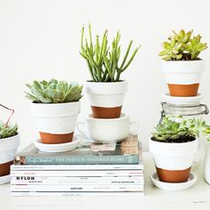 Painted Pots + Succulents, need to do maybe two or three of these with white in terracotta pots. Pick up small pots, two in one size, one a bit larger. Paint dip and use by tv and on new storage piece on large far wall between windows.