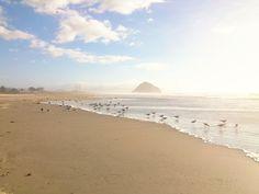 Beautiful Morro Bay, Ca.