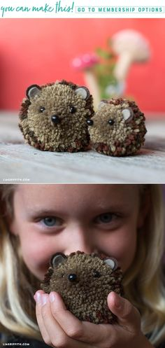 Hedgehog Pom Pom Pals (Video) - Lia Griffith - www.liagriffith.com #diyinspiration #diykids #diytoys #pompom #pompoms #yarn #feltcute #madewithlia