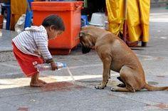 Percepções...: Pratique a gentileza...