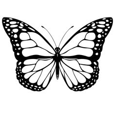 Monarch Butterfly Free Coloring Pages (color in before/after printing?