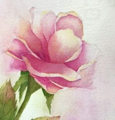 A Valentine s Sketch and Painting of Roses Sketching and Painting the Moments Watercolor Sketchbook, Watercolour Painting, Watercolor Flowers, Drawing Flowers, Watercolours, Rose Sketch, Learn Art, Illustrations, Watercolor Techniques