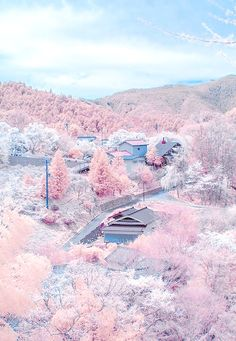 Kirschblüten in voller Blüte am Mount Yoshino, Nara, Japan - Reisen Beautiful Places In The World, Places Around The World, Around The Worlds, Beautiful Scenery, Beautiful Pictures, Beautiful Beautiful, Amazing Places, Pretty Photos, Nature Pictures