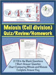 Meiosis (Cell Division) Quiz / Homework / Review