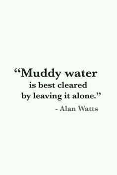 Muddy water is best cleared by leaving it alone. ~ Alan Watts.