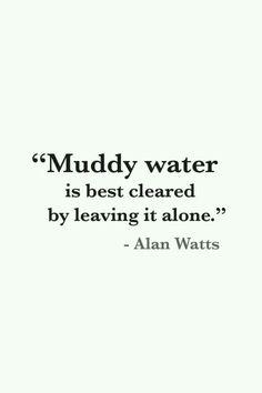 Muddy water is best cleared by leaving it alone. ~ Alan Watts.