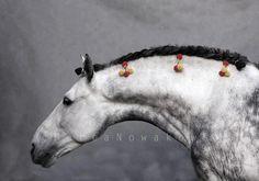 Curve by Marta Nowakowska. beautiful!