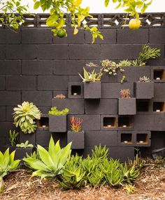 Constructing a Cinder Block Garden is one of the most truly effective methods to use a minimal quantity of space to elevate your own fresh vegetables. Cinder blocks are a good option if you plan a keyhole garden too. Backyard Fences, Backyard Landscaping, Backyard Ideas, Landscaping Ideas, Fence Garden, Fence Art, Fence Ideas, Easy Garden, Garden Planters