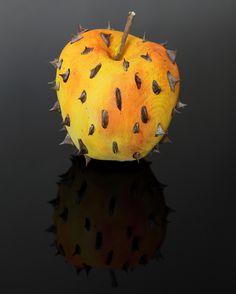 #art Forbidden fruit collection BY MARCO NONES www.marconones.com